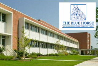 developer-properties-the-blue-horse